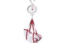 SECA 310- Mechanical circular dial scales