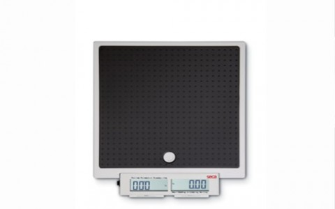 SECA 874- Mobile flat scales for mobile use with push buttons and double display